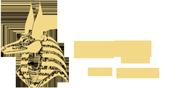 Anubis Web Agency